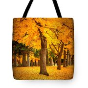 Dreamy Autumn Day Tote Bag