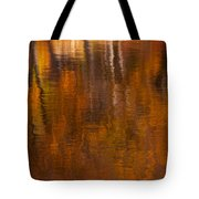 Dreamy Autumn Tote Bag