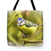 Dreamy Blue Tit Chirping Tote Bag