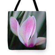 Dreamy Cyclamen Tote Bag