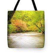 Dreamy Days Tote Bag