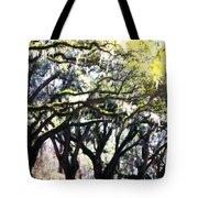 Dreamy Live Oaks Tote Bag