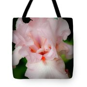 Dreamy Pink Iris Tote Bag