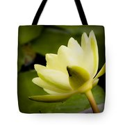 Dreamy Water Lilly Tote Bag