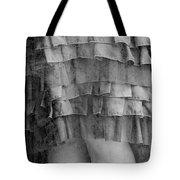 Dress #4538 Tote Bag