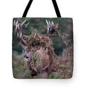 Dressed Red Stag Tote Bag