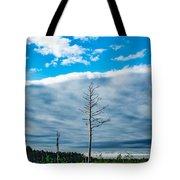 Drew County Bonanza Tote Bag