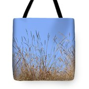 Dried Grass Blue Sky Tote Bag