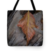 Dried Leaf On Log Tote Bag