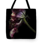 Dried Tulip Tote Bag