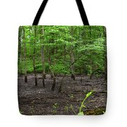 Dried Up  Pond Tote Bag