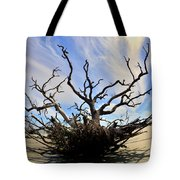 Driftwood And Roots Hunting Island Sc Tote Bag by Lisa Wooten