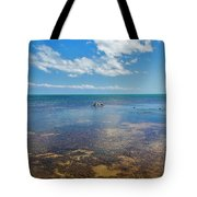 Driftwood At Low Tide In Key West Tote Bag