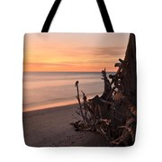 Driftwood At Sunset Tote Bag