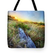 Driftwood At The Dunes Tote Bag