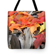 Driftwood Autumn Leaves Art Prints Baslee Troutman Tote Bag