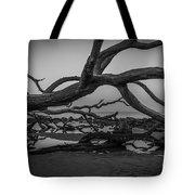 Driftwood Beach 4 Tote Bag