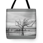 Still Standing In Black And White Tote Bag
