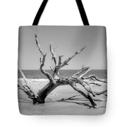 Driftwood Beach In Black And White Tote Bag