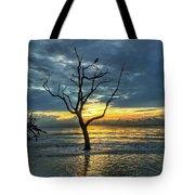 Driftwood Beach Sunrise Jekyll Island Georgia Tote Bag