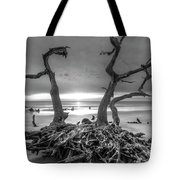 Driftwood Black And White Tote Bag