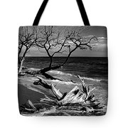 Driftwood Bw Fine Art Photography Print Tote Bag