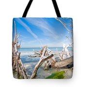 Driftwood C141354 Tote Bag