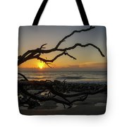 Driftwood Dawn Tote Bag