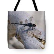 Driftwood Dragofly Tote Bag