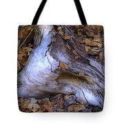 Driftwood In Lahonda Tote Bag
