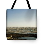 Driftwood On Arctic Beach Tote Bag