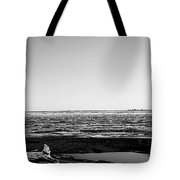 Driftwood On Arctic Beach Balck And White Tote Bag