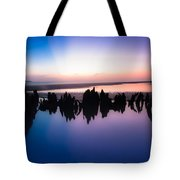 Driftwood Skyline Tote Bag