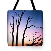 Driftwood Sunrise Tote Bag