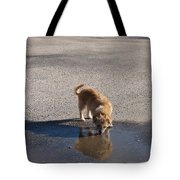 Drinking Enough For Reflection And Shadow Tote Bag