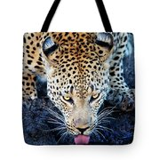 Drinking Leopard Tote Bag