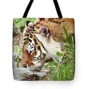 Drinking Tiger Tote Bag