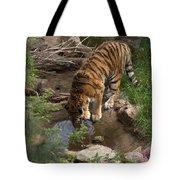 Drinking Tiger Tote Bag