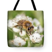 Drinking Up The Nectar, Apis Mellifera Tote Bag