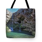 Dripping Springs Falls Tote Bag