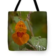 Dripping Wet #1 Tote Bag
