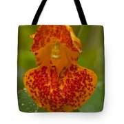 Dripping Wet #2 Tote Bag