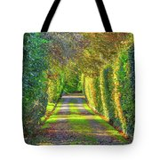 Drive Into Autumn Tote Bag