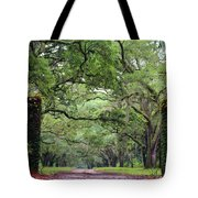 Driveway To The Past Tote Bag