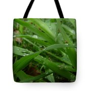 Droplets 01 Tote Bag