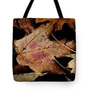 Droplets On Fallen Leaves Tote Bag