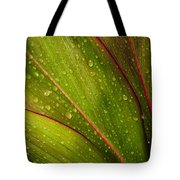 Droplets On Ti Leaves Tote Bag