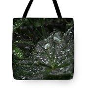 Drops And Leaf Tote Bag