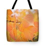 Drops Of Autumn Tote Bag