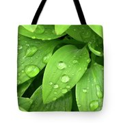 Drops On Leaves Tote Bag